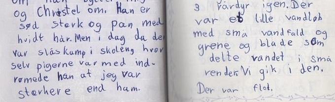 lilla dagbog kæresteriringen 6